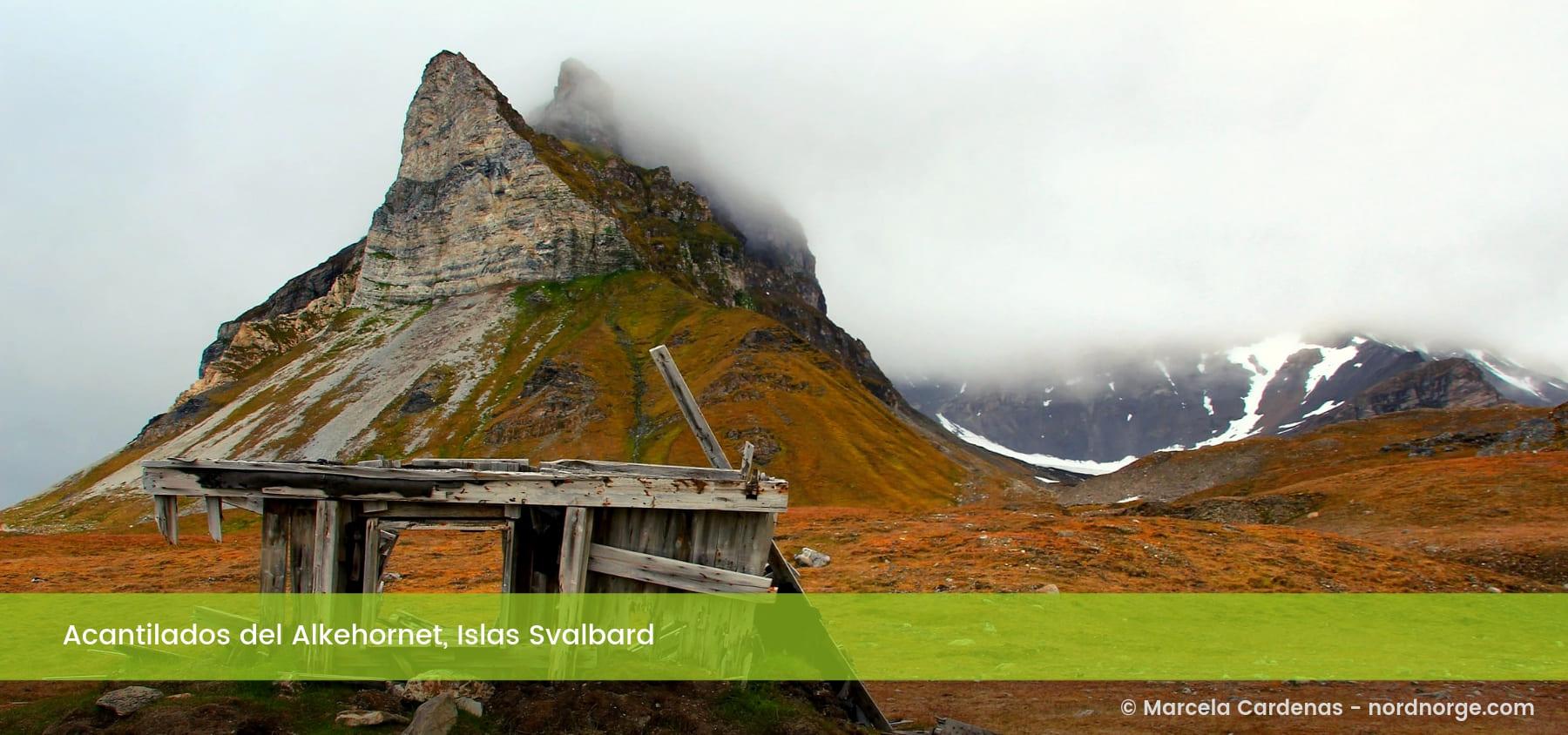 Acantilados del Alkehornet Islas Svalbard Noruega