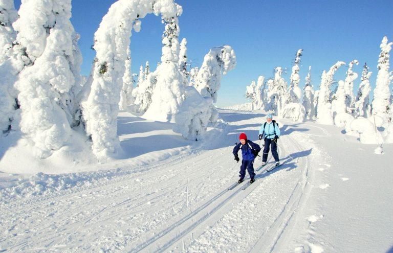 Esquís altai
